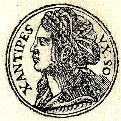 জানথিপি