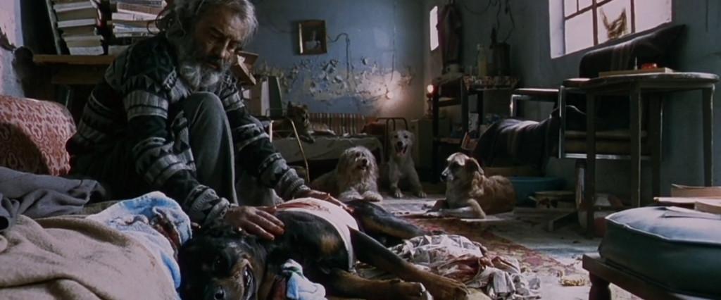 Amores perros El Chivo