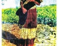 রূপবান ও বেহুলার দিকে তাকাই